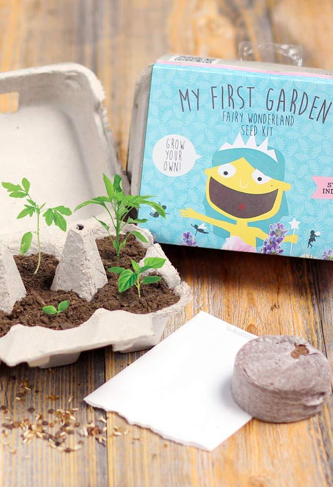 Kit para começar o jardim em uma caixa de ovo