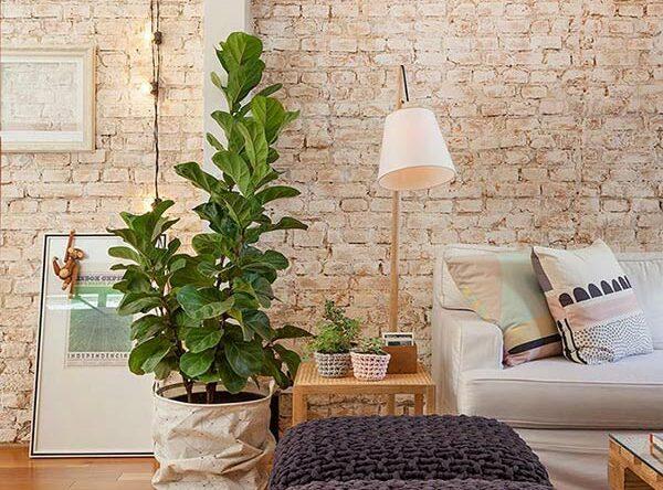 60 Dicas de decoração simples: truques para aplicar em casa