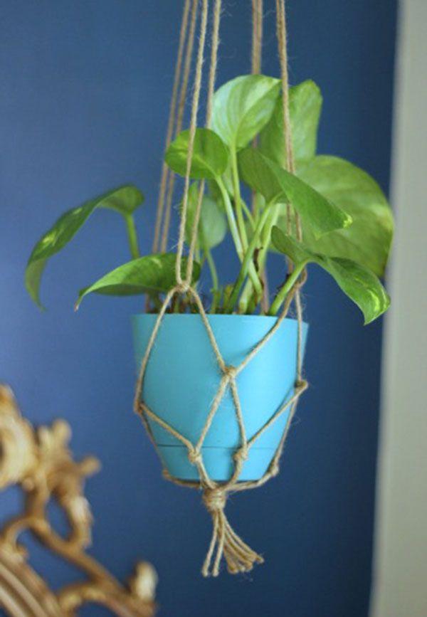Barbante para plantas