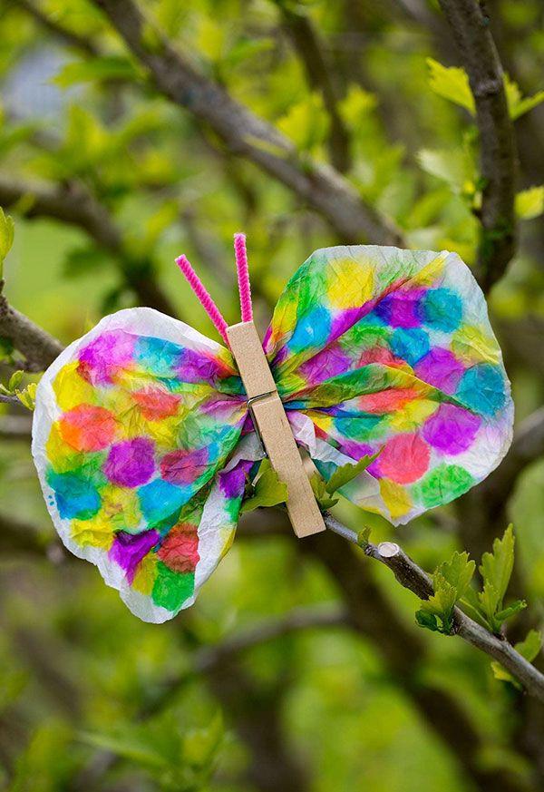 Detalhe da borboleta com filtro de café