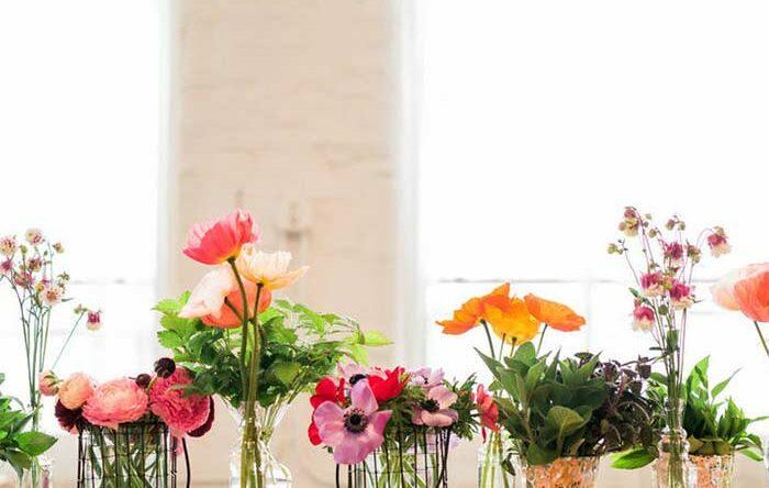 Arranjos de flores: espécies de plantas e inspirações de decoração