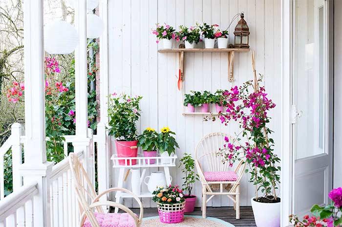 Flores para alegrar o seu lar