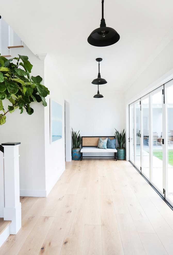 Uma planta perfeita para decorar cantos de parede e usar numa área de relaxamento
