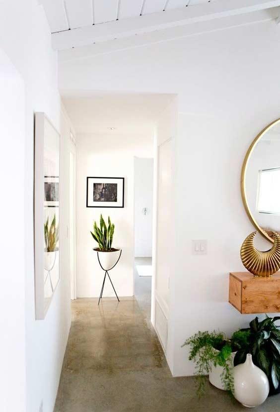 Plantinha como decoração de corredores vazios