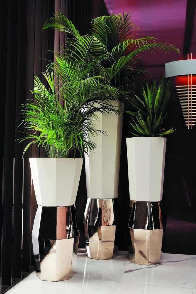 Entre o áspero do cimento e o brilho do metal: esse trio de vasos com palmeiras acertou na combinação