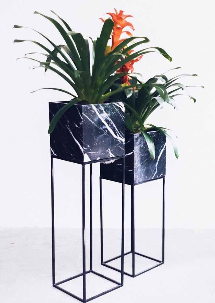 E as bromélias também se renderam ao charme dos vasos modernos