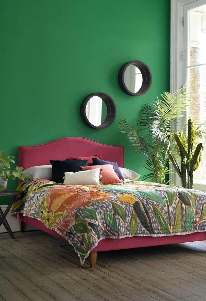 Traga espécies de plantas para a decoração de um quarto verde