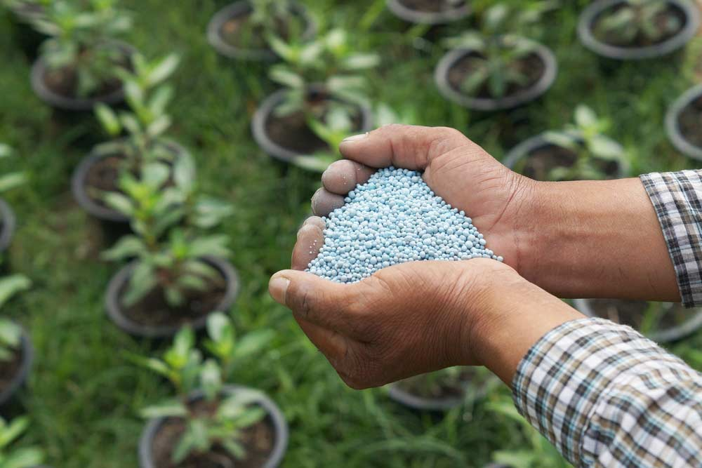 Fertilizante para plantas / adubo