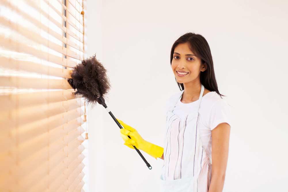 Como limpar persiana doublevision com espanadores