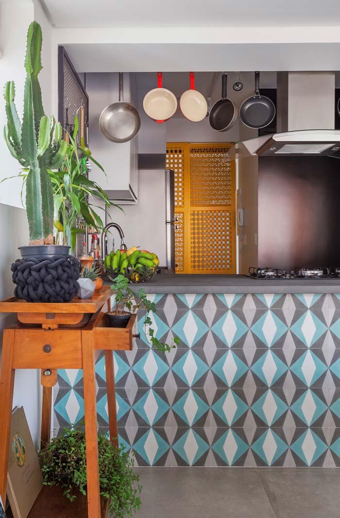 Cactos para alegrar a cozinha rústica