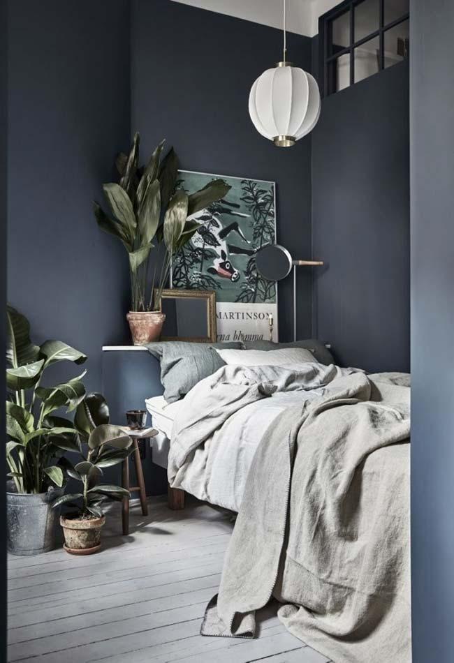 Plantas em quarto pequeno
