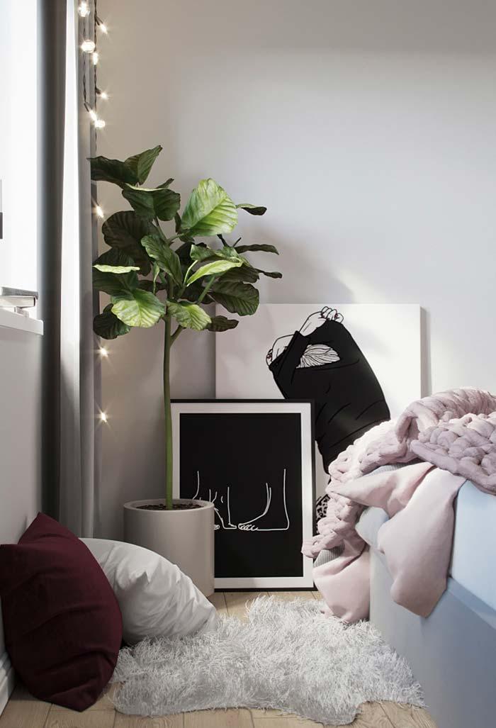 Luzes de pisca-pisca, plantas e imagens