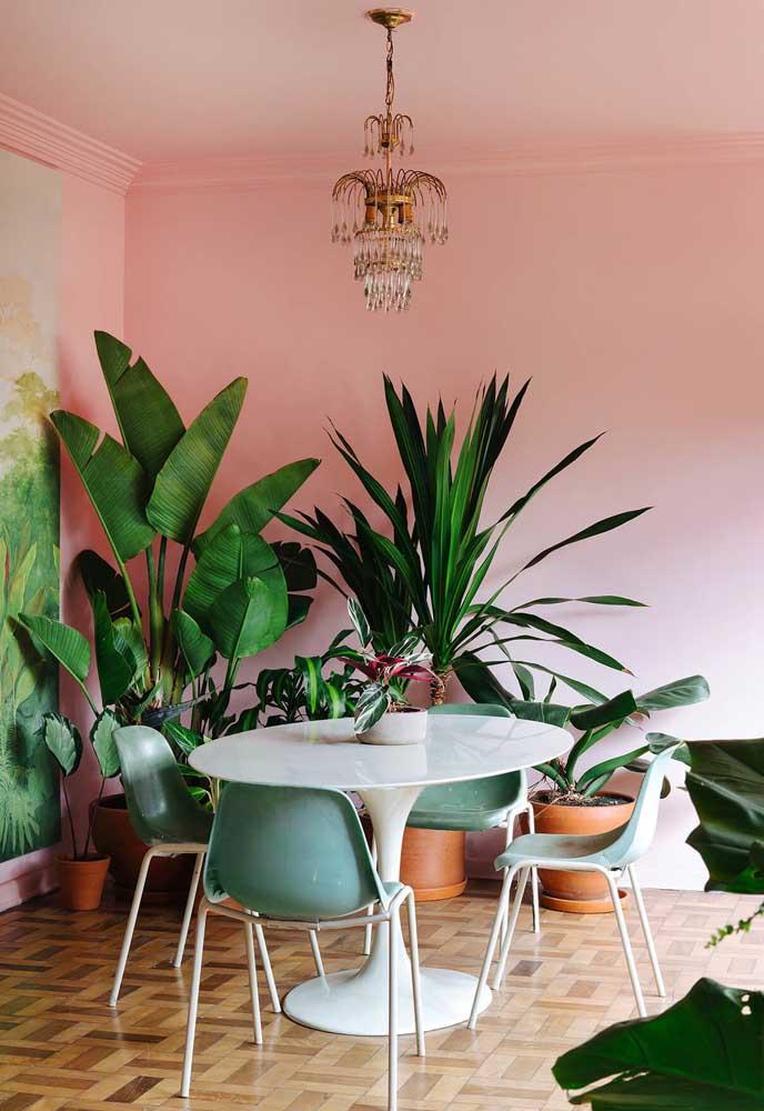 O tom rosa pode ser o escolhido também para decorar ambientes diferenciados da casa.