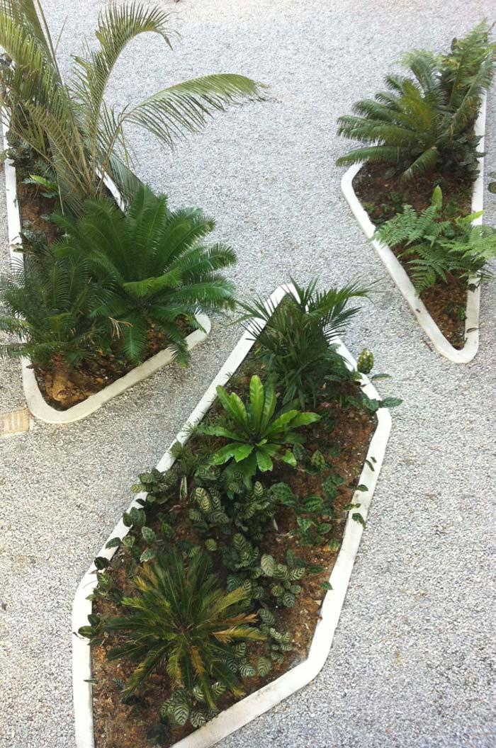 As minúsculas pedrinhas brancas destacam as plantas dos canteiros