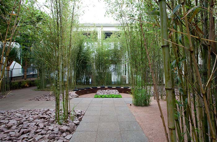 Pedras de estilo rústico contrastam com a delicadeza dos bambus