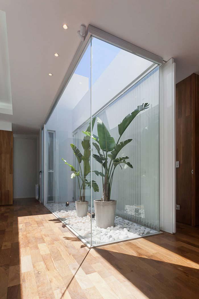 Teto de vidro traz a iluminação necessária