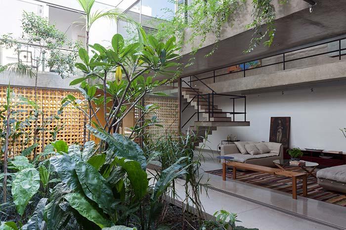 Jardim de inverno para ser apreciado do sofá da sala