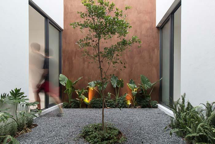 Canteiros laterais iluminados e, no centro, uma árvore pequena e charmosa