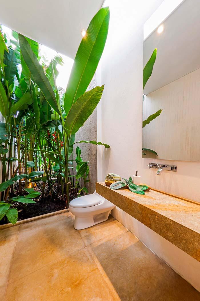 Bananeiras de jardim invadem o banheiro