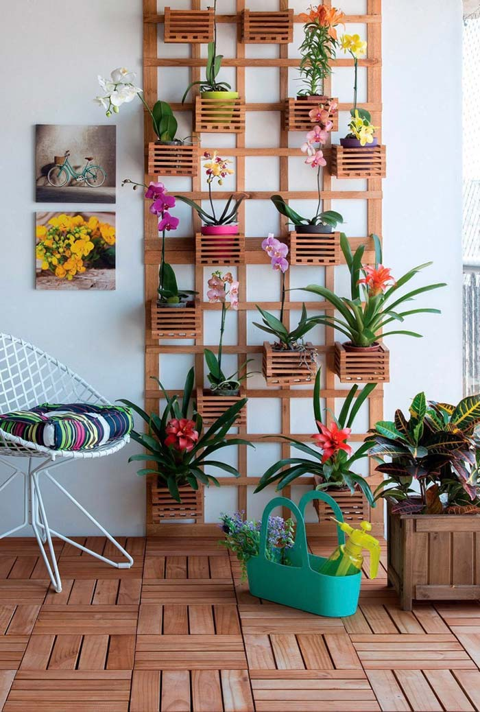 Jardim vertical de orquídeas e bromélias coloridas