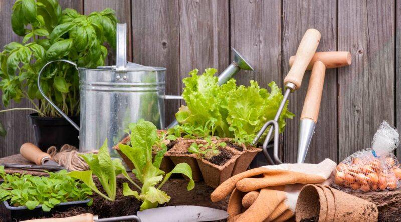 Decoração de jardim: 81 ideias, fotos e como montar