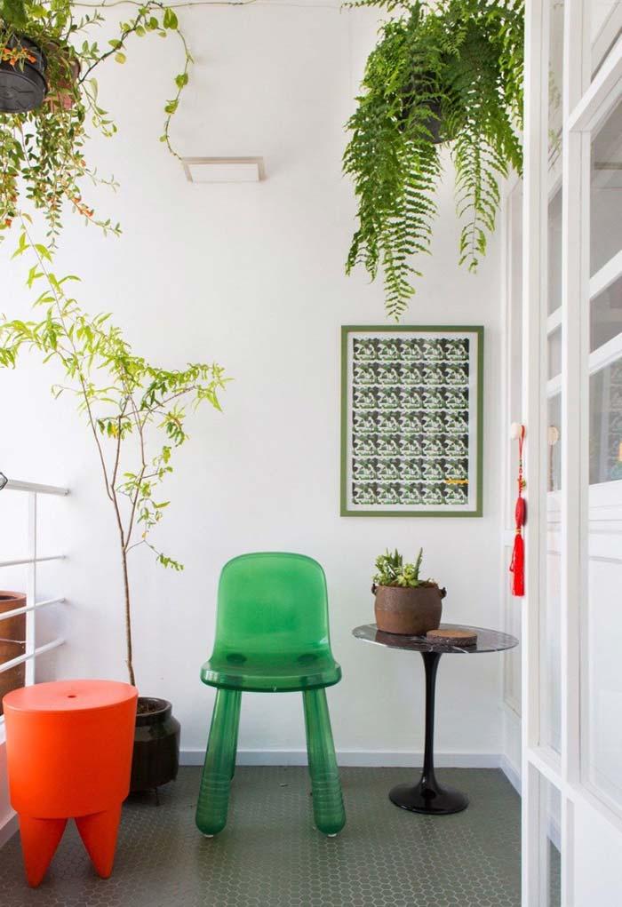 As plantas valorizam a decoração do ambiente