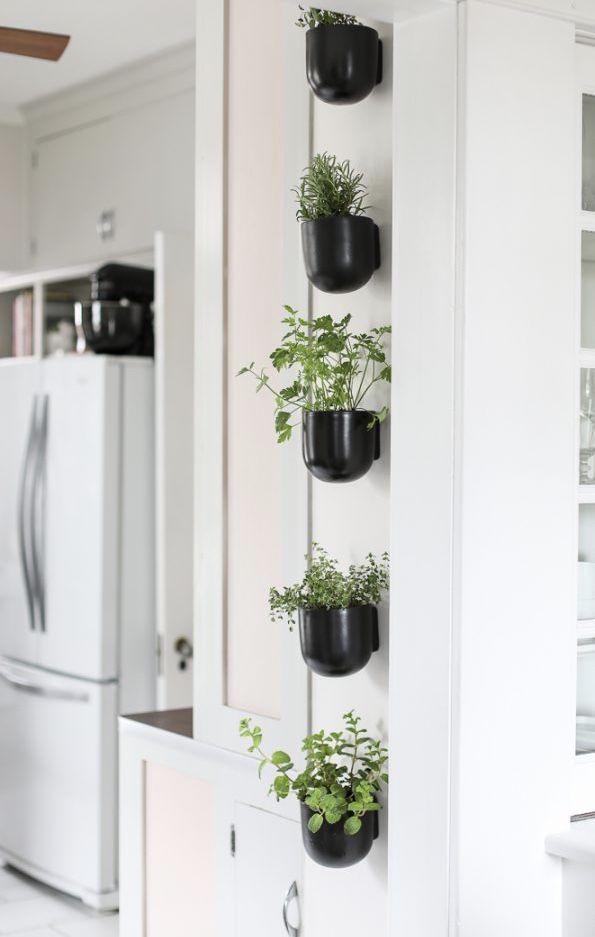 Essa mini horta decora o corredor que leva à cozinha