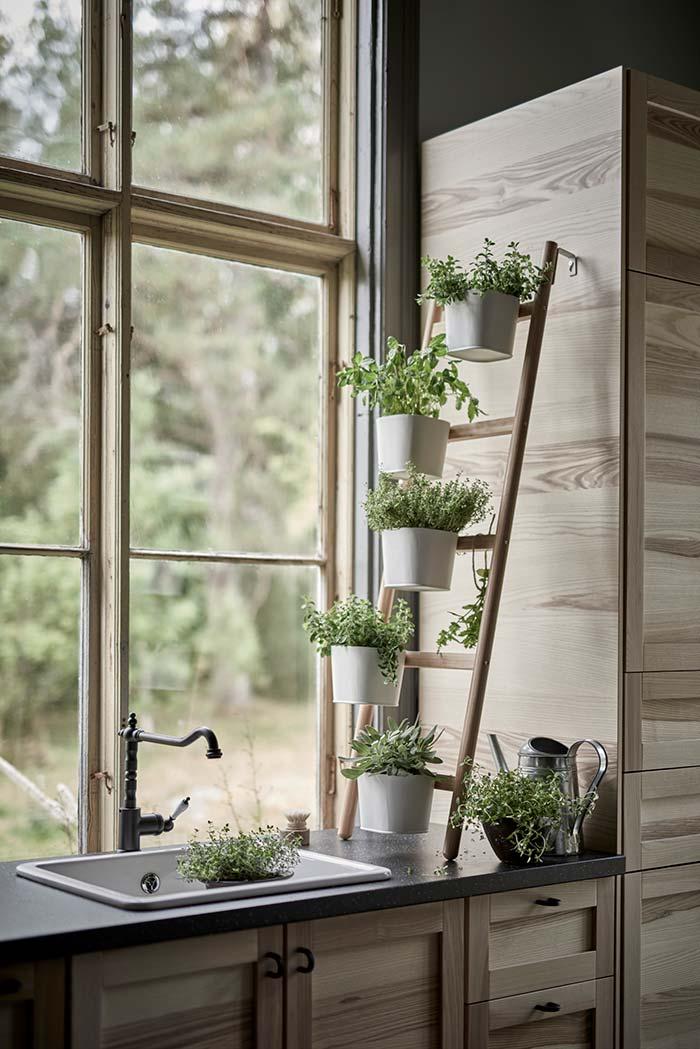 a horta vertical recebe toda a luz que entra pela janela