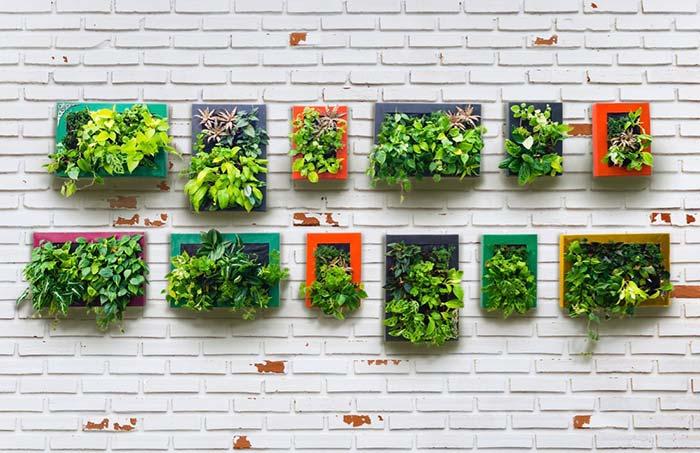 Horta vertical em quadrinhos coloridos