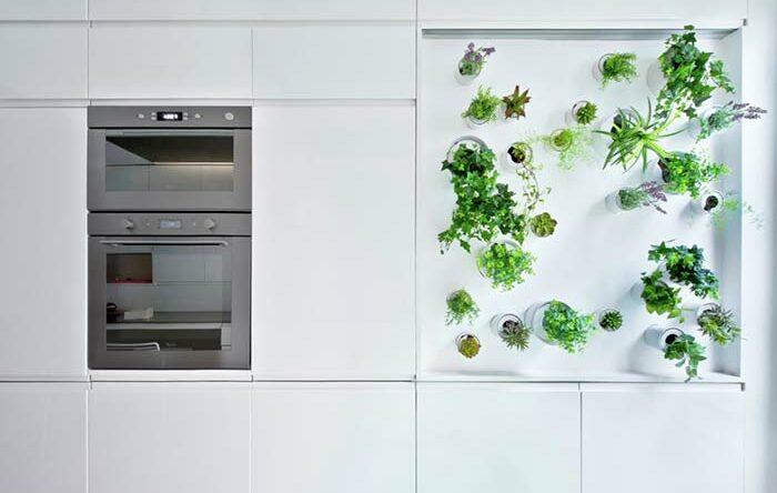 Horta vertical: saiba como montar e decorar com 60 imagens