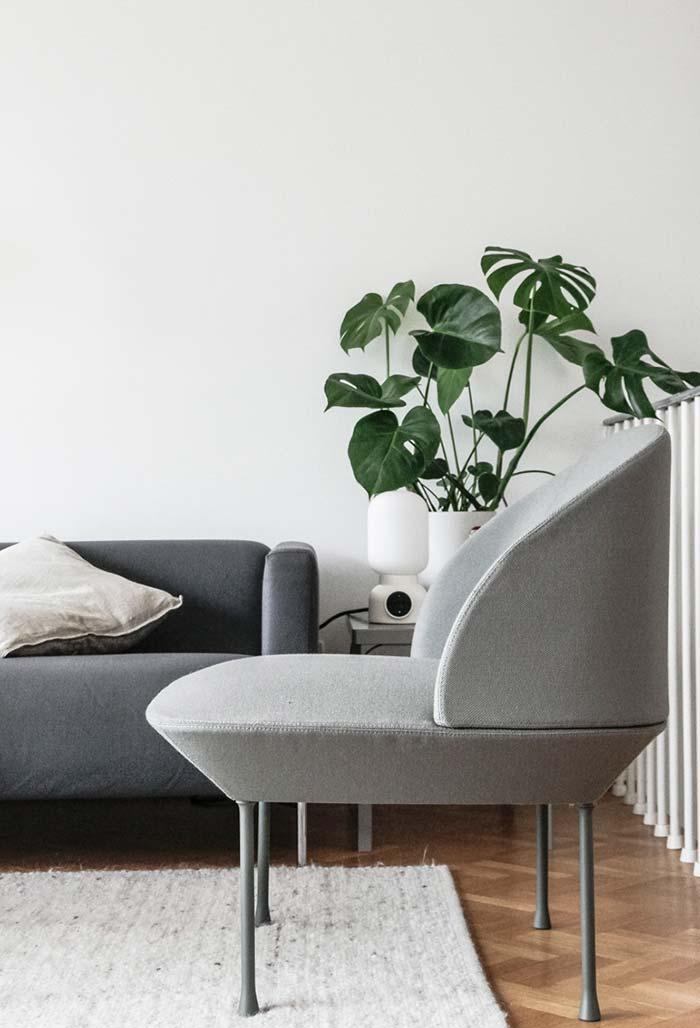 Decoração sóbria com plantas para sala