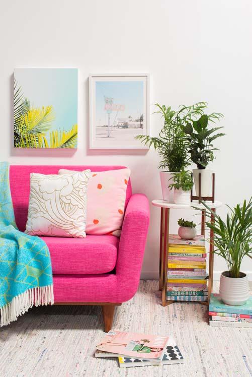 Plantas na sala com quadros
