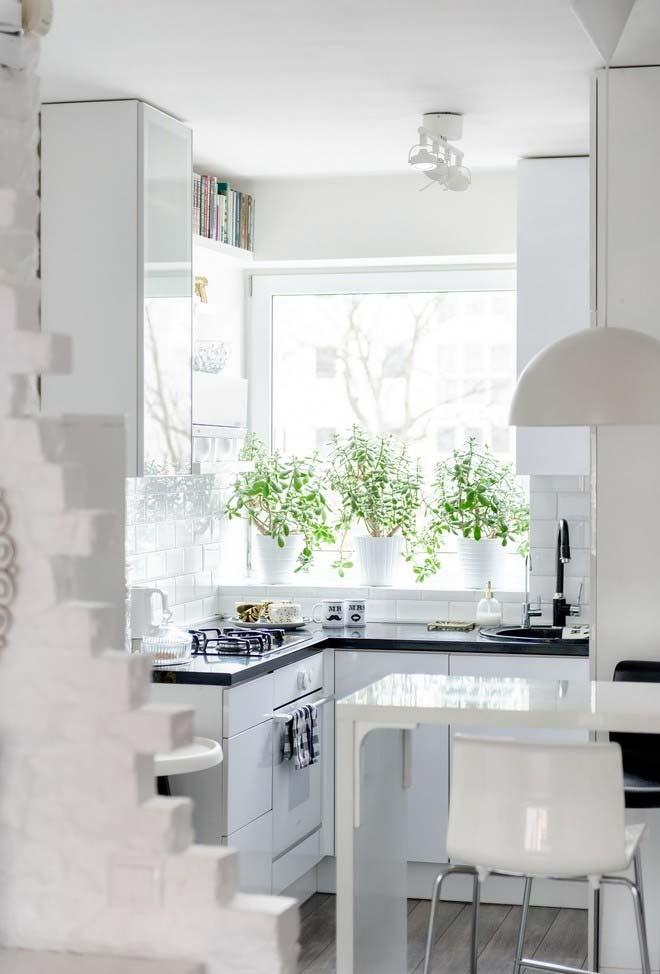 Plantinhas na cozinha pequena