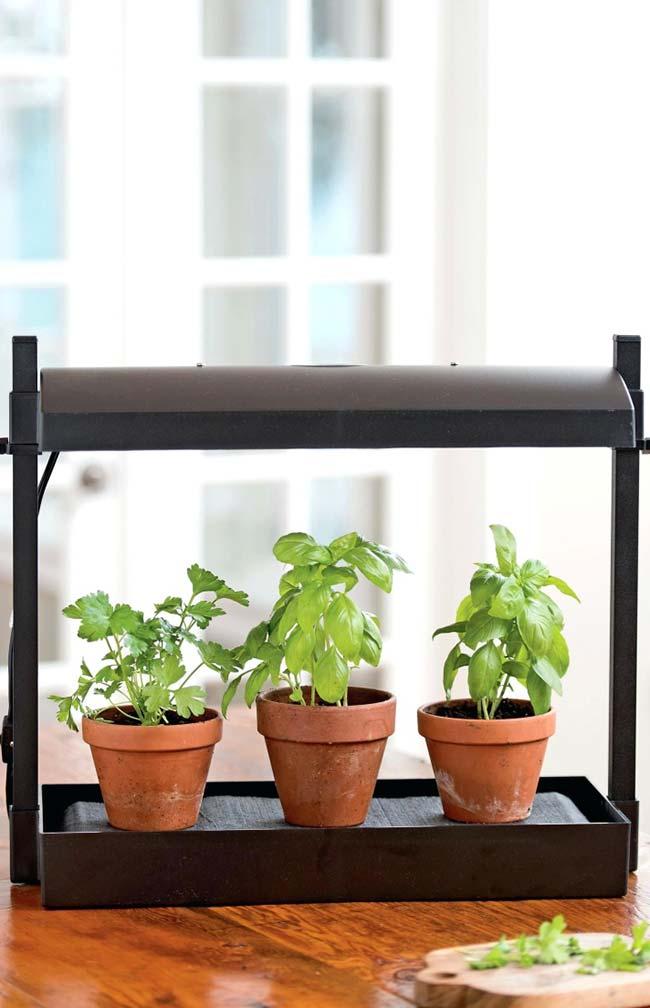 Iluminação artificial para horta