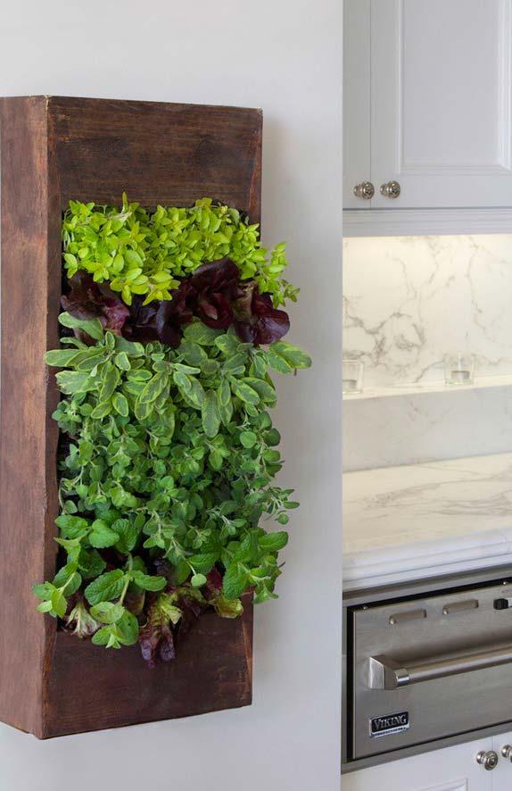 Horta em apartamentos e ambientes internos