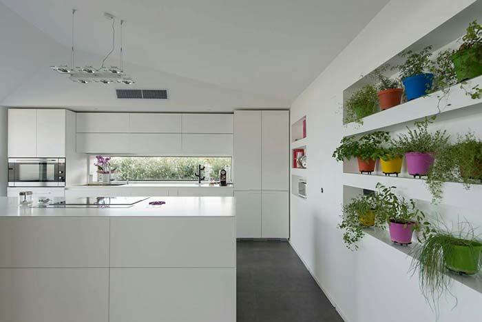 Horta caseira em prateleiras