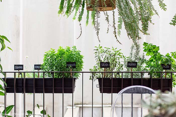 Horta caseira com plaquinhas de madeira