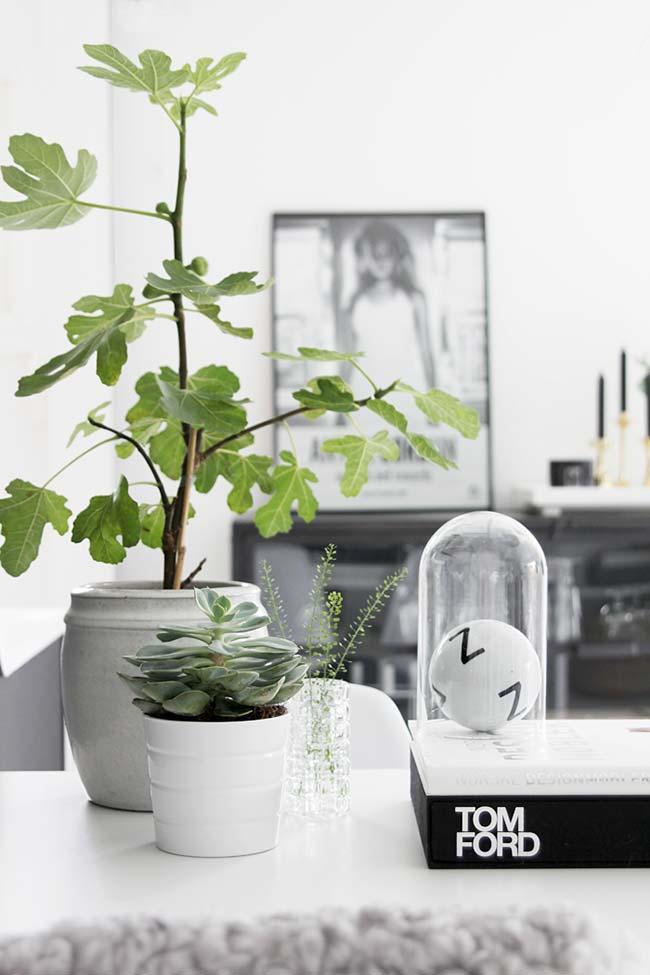 Vasos de cimento podem aderir a qualquer formato ou textura
