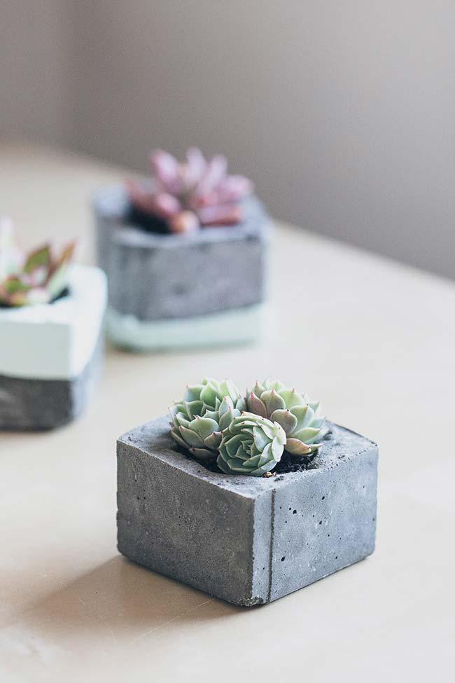 Conjunto de vasos de cimento