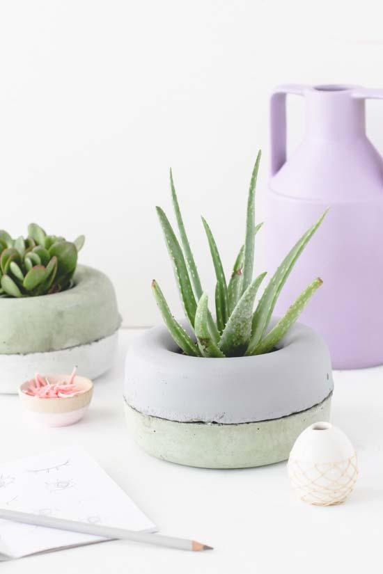 Vaso de cimento baixo para plantas com crescimento limitado