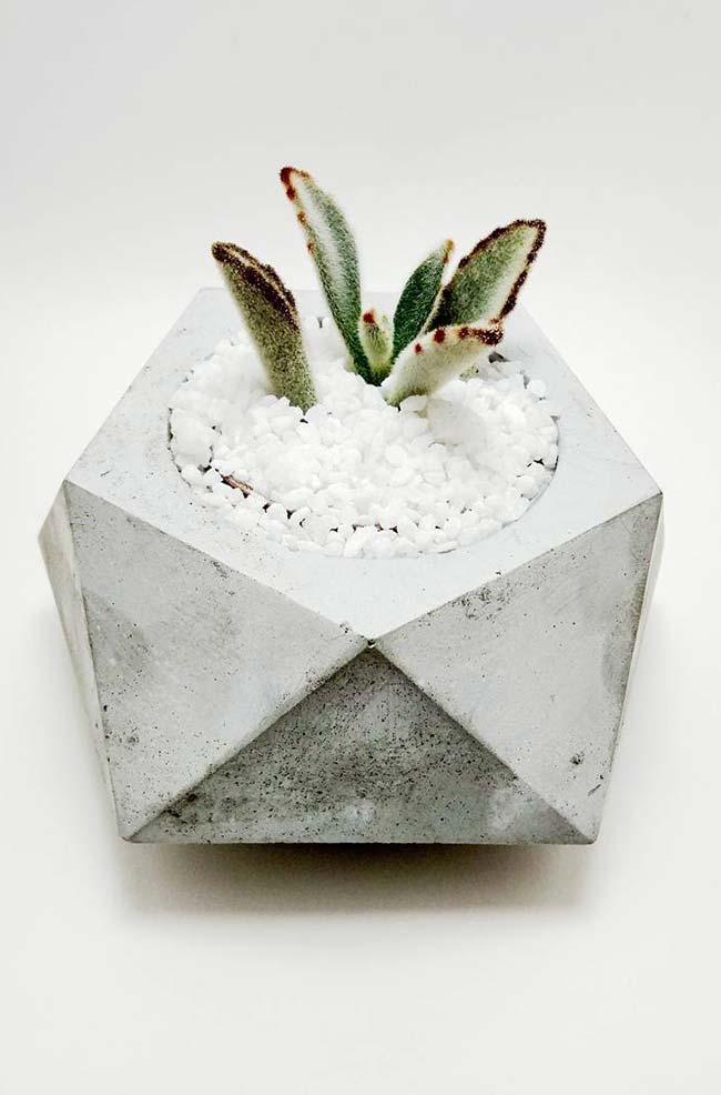 Pedrinhas brancas na decoração do vaso de cimento
