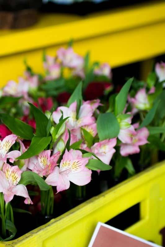 Plantinhas e flores ajudam a dar um clima mais fresco e rústico para o ambiente