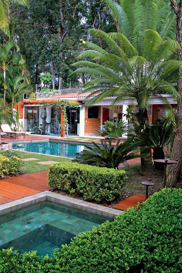 Palmeiras são ótimas para trazer clima tropical para dentro de casa