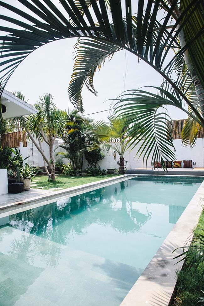 Espécies variadas de palmeiras compõe o projeto paisagístico dessa área externa