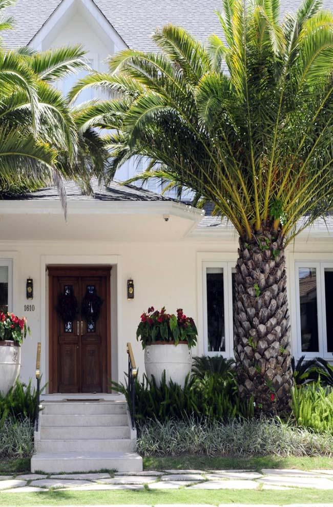 Entrada da casa ornamentada com palmeiras washingtonia