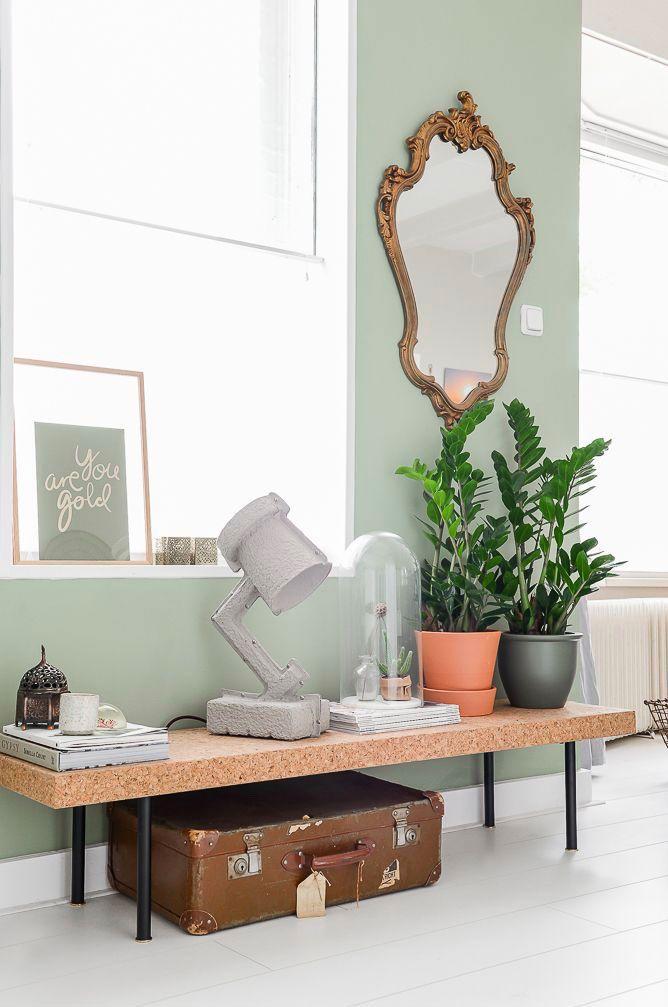 Vaso de zamioculca dentro de casa