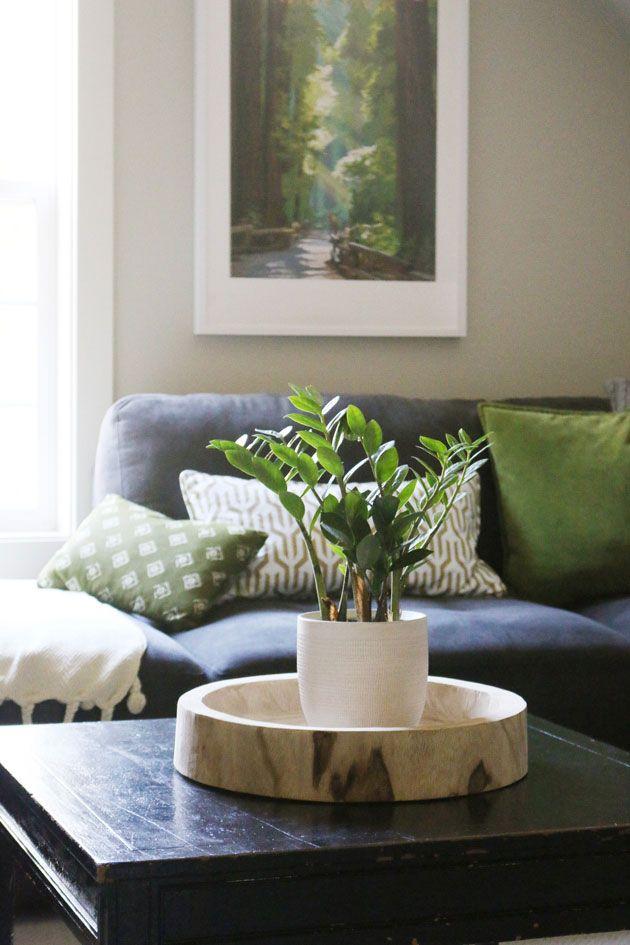 Mesa rústica com vaso de zamioculca