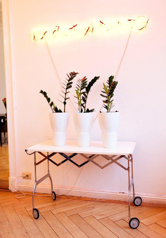 Trio de zamioculcas decorando o corredor iluminado apenas por um letreiro de LED
