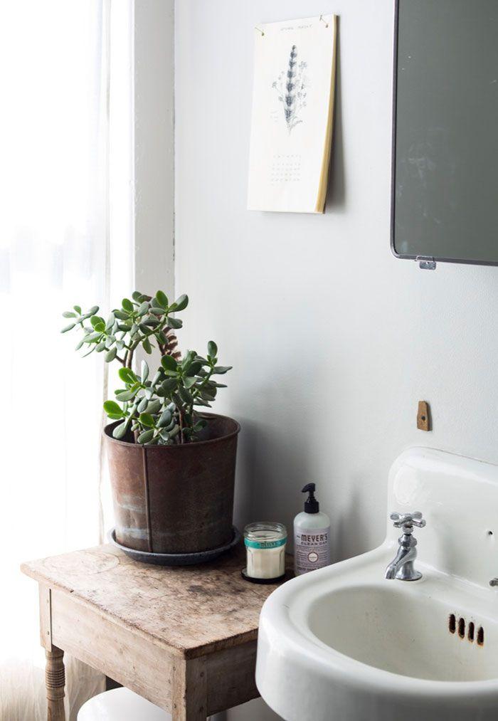 Banheiro de estilo rústico e retrô decorado com vaso de zamioculca