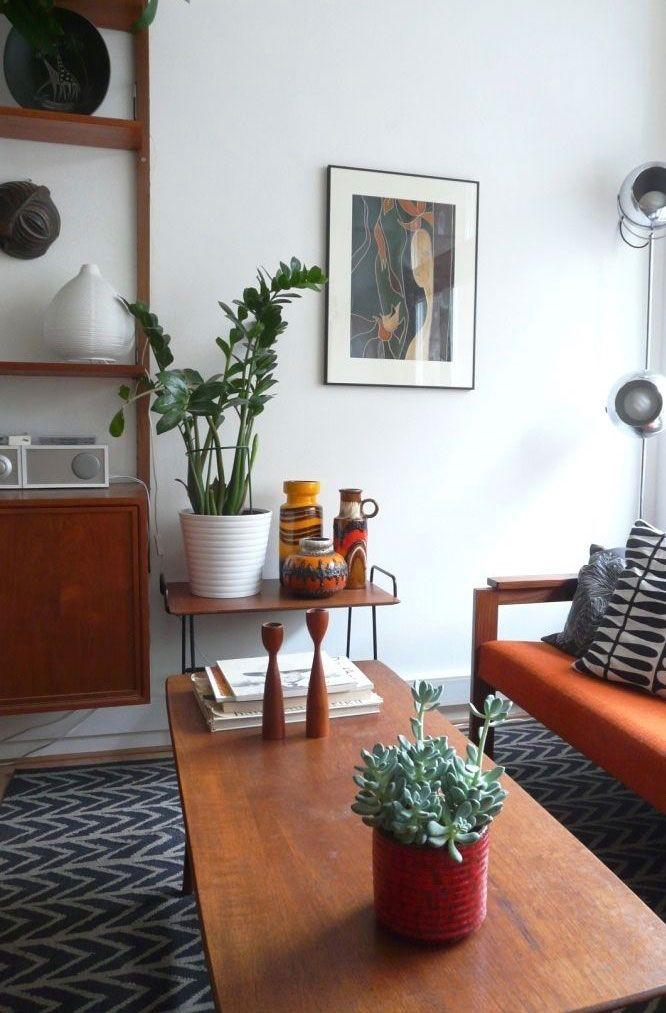 Zamioculca e suculenta na decoração da sala